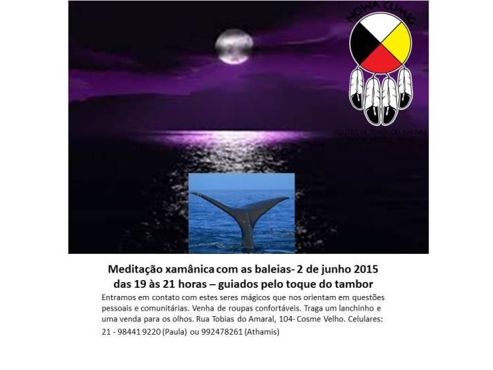 Meditação baleias- 2 de junho